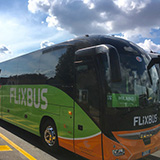 whatsup184flixbus22aug16 q